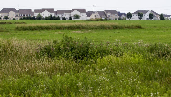 The fields surrounding Charles Price Memorial Park, and butting up to homes along Levels Road, are slated to become a large sports complex under a proposed design opposed by home owners on Levels Road.