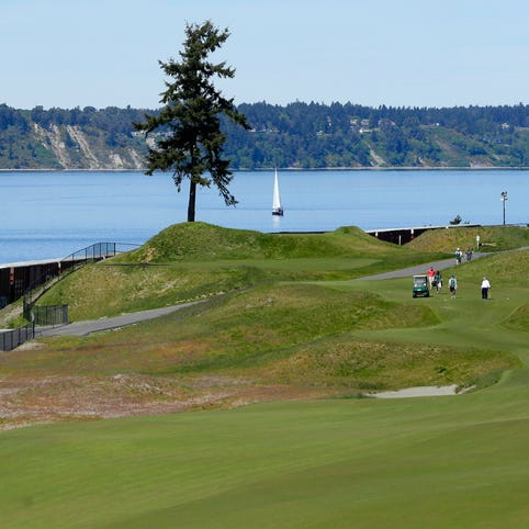 A train passes by Chambers Bay's signature lone tree.
