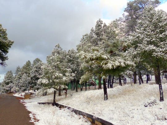 While snow clung to the trees, many roads cleared up