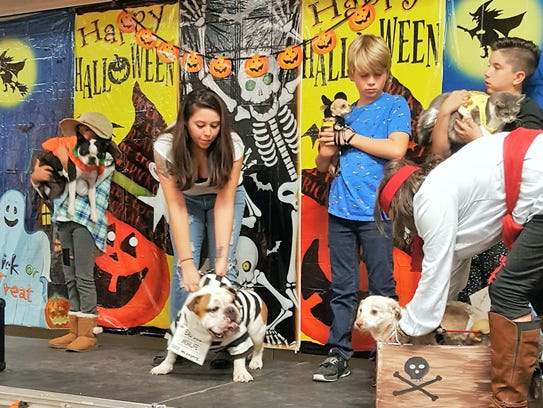 Winners stand on stage during the pet costume contest