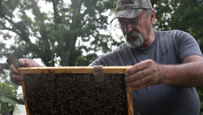 Tony Hogg, the President of the Florida Beekeeper's Association and Master Beekeeper, at his Full Moon Farm where he produces honey and provides pollination services for area farmers.