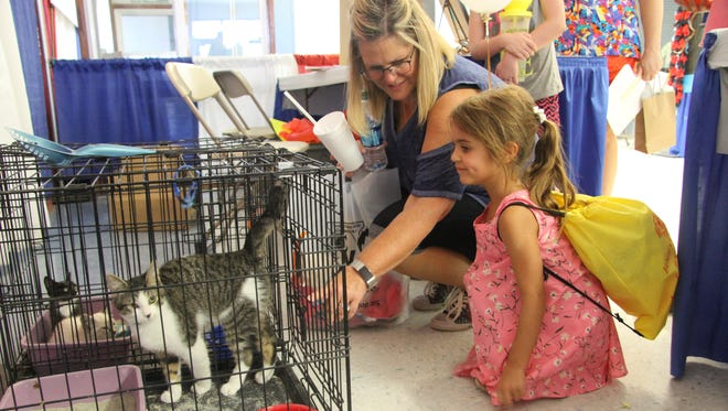 Eddy County Chief Deputy Clerk Darlene Rosprim and her granddaughter, 4-year-old Brooklyn Chase, visit the kittens at Paws and Claws' booth, Wednesday, July 26, 2017,. About 11 animals have been adopted since Monday at the Eddy County Fair.