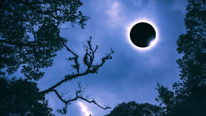 Amazing scientific natural phenomenon. Diamond ring, prominence and internal corona. Total solar eclipse glowing on blue sky above silhouette of trees, serenity nature.