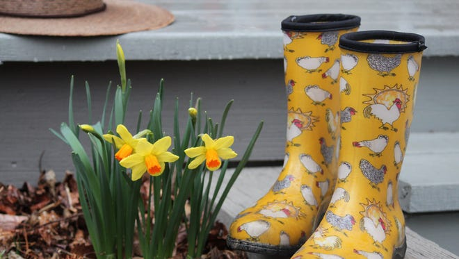 Time to pull out those chicken boots for the Western North Carolina Gardening Symposium.