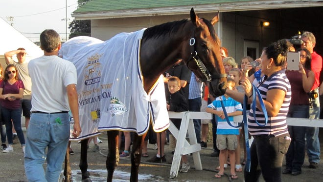 Barn workers adjust the blanket on Triple Crown winner American Pharoah following his monring jog and bath at Churchill Downs, Friday, June 12, 2015, in Louisville, Ky.