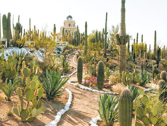 The cactus garden at the Tovrea Castle in Phoenix.