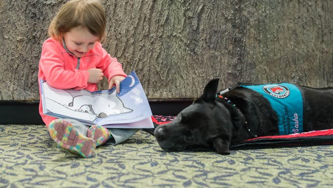 Three-year-old Briahnna Phillips shows pictures to Sasha, a Paws for Friendship dog, at the Willard Library.