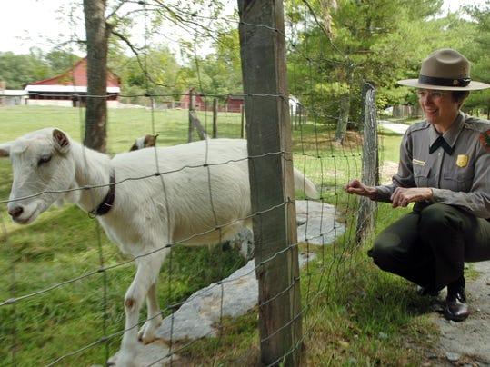 carl sandburg goats
