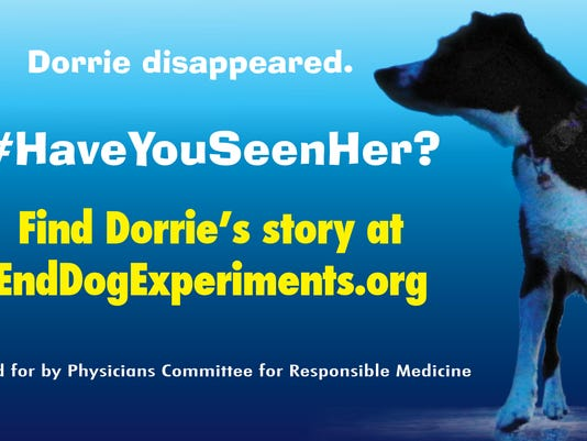 Dorrie Protest Ad