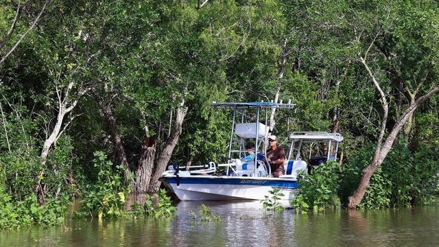 Members of the Nueces River Preservation Association maneuver a boat cutting tree limbs and removing debris from the area Tuesday, May 19, 2015.