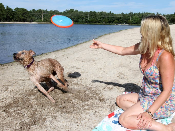 Susie Wernham, Browns Mills,  plays  Frisbie with her dog Maggie, a 10 year old terrier mix at Harry Wright Lake Park in the Whiting section of Manchester. September 3, 2014 Manchester. Photo by Robert Ward
