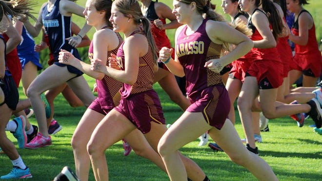 The Wabasso Rabbits girls cross country team topped the MVL Chargers in its 2020 season debut.