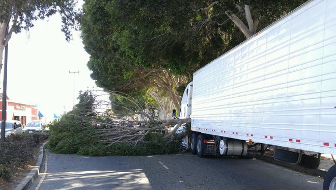 A portion of Oxnard Boulevard was shut down so crews could remove a tree from the roadway following a crash involving a semi truck, officials said.