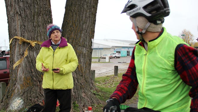 Burlington resident Ann Taylor asks a passing bicyclist Saturday if she wants to know about the tree to which Taylor has been chaining herself. The tree is set to be cut down by the city as part of a plan to widen the bike path.