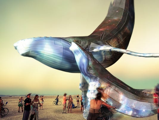635950500216504065-whale-cu-banner-1.jpg
