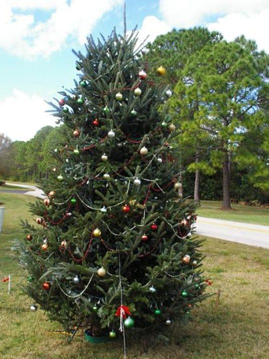 636162230106939914-eagle-ridge-christmas-tree.jpg