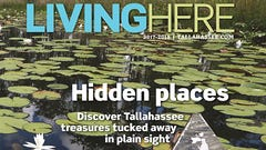 Living Here: the listings