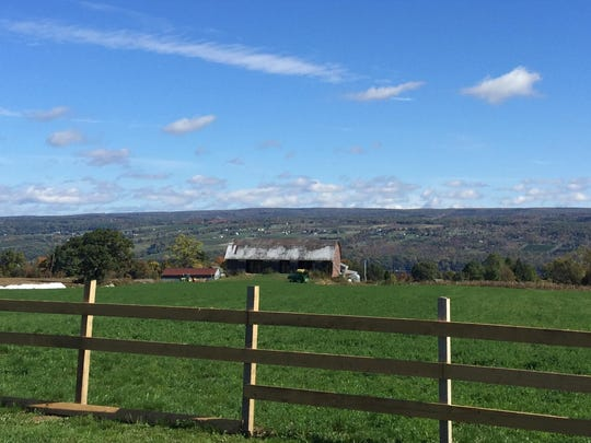 A beautiful day along the Seneca Lake Wine Trail can be a great way to get some time outdoors.
