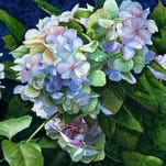 """Blue Hydrangeas"" by Therese Ferguson"