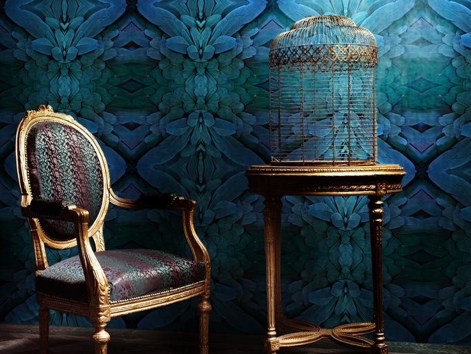 Rich Plume from the Detroit Wallpaper Co. adds drama