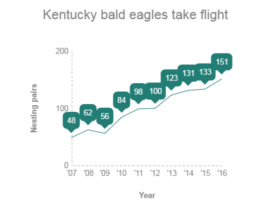 Kentucky biologists count larger and larger numbers of nesting bald eagle pairs every year.