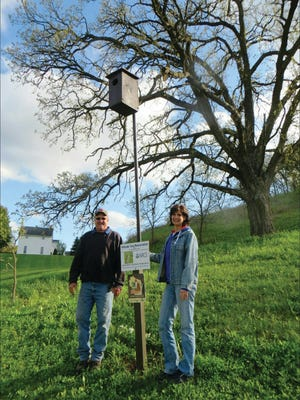 Jerome and Jackie Helmenstine have worked hard to restore their property located in the Driftless area in Dane County.