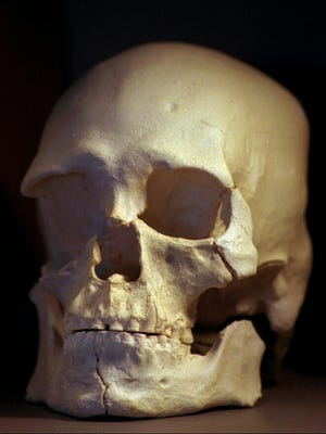 FILE - This July 24, 1997 file photo shows a plastic casting of the skull from the bones known as Kennewick Man, in Richland, Wash. A bill has been introduced in the U.S. Senate to require the federal government to give the bones of the Kennewick Man back to the Indian tribes from which he descended. The bipartisan bill was introduced Tuesday by Sen. Barbara Boxer and Sen. James Inhofe.