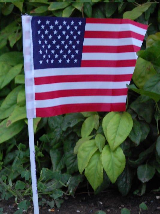 07.05.15 - American Flag