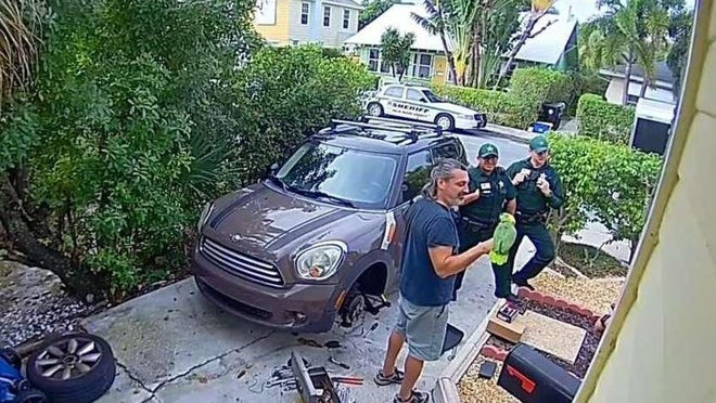 This screen grab from YouTube shows a Dec. 29, 2019, incident in the Lake Worth Beach area, in which a parrot whose cries sounded like someone in distress, led a neighbor to call the Palm Beach County Sheriff's Office.