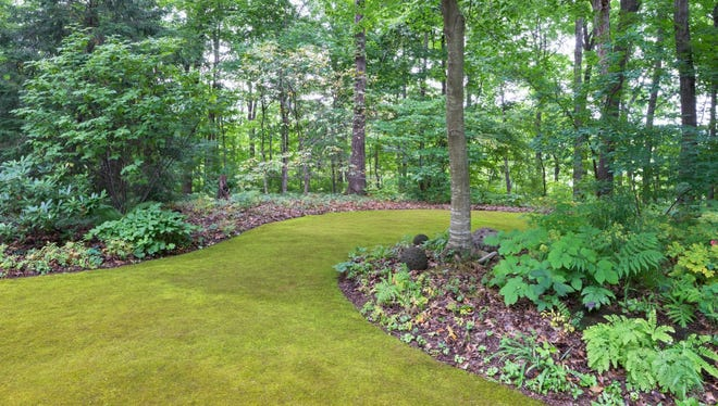 This undated photo provided by J. Paul Moore shows part of his moss yard in Nashville, Tenn. Moss is a versatile plant to use in the garden, providing year-round green in everything from containers to a full lawn.