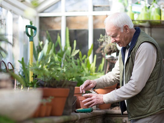 636620027389217629-old-man-gardening-.jpg
