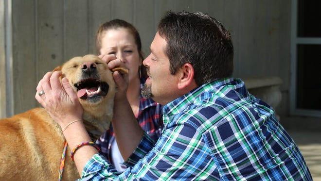 Buddy and his owners were reunited at Greenville County Animal Care after two years apart, and it looks like they didn't miss a beat.