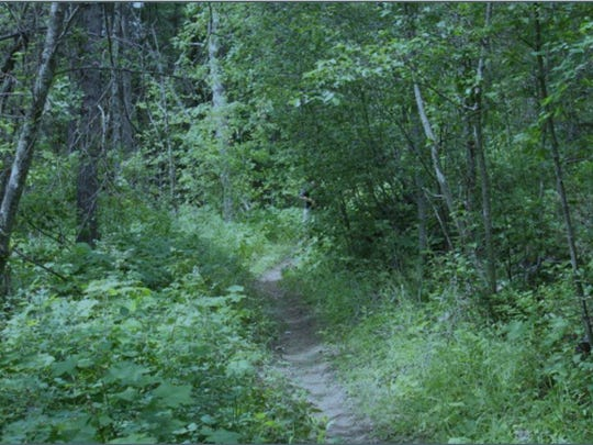 The person on the trail indicates the collision/fatality site and is about 37 feet from the camera. At a speed of 20-25 mph, a biker would travel 29-36 feet every second, approximately the same distance from the camera to the person on the trail.