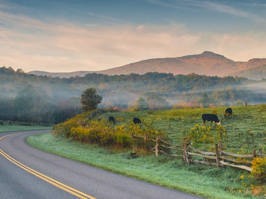 Morning fog lifts to reveal shades of autumn color