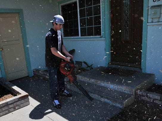 According to the Lung Association, a leaf blower causes