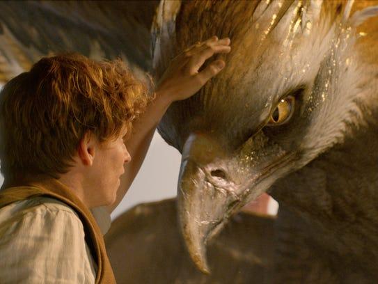 Eddie Redmayne  as Newt Scamander and a beast called