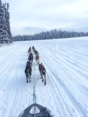 Emily Maxell leads a team of dogs during the Aurora 50/50 dogsled race in Big Lake, Alaska.