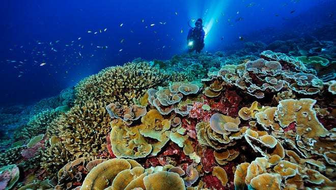 Ocean photographer Brian Skerry will speak at UCSB Sunday.