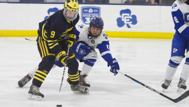 Hartland's Joey Larson, checked by Detroit Catholic Central's Patrick Brandemihl, moves to the net at USA Hockey Arena on Wednesday, Feb. 21, 2018.