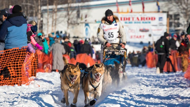 Mansfield native and current Alaska resident Matthew Failor competes in the 2018 Iditarod Trail Sled Dog Race in March 2018. Failor placed 13th, his best finish in his seventh Iditarod.