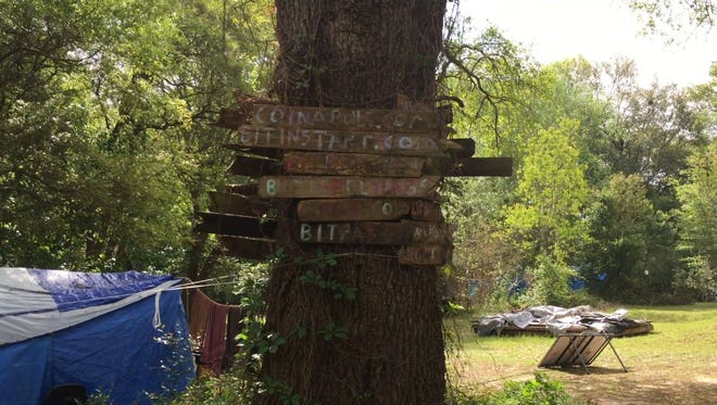 An old signs hang from the tree at Satoshi Forest.
