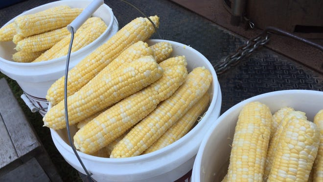 The Iowa State Fair's free sweet corn feed saw more than 1,200 ears handed out to fairgoers.