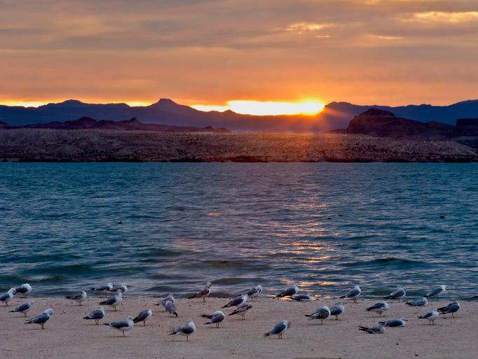 Sun City West Az >> Arizona's best beaches -- no, really