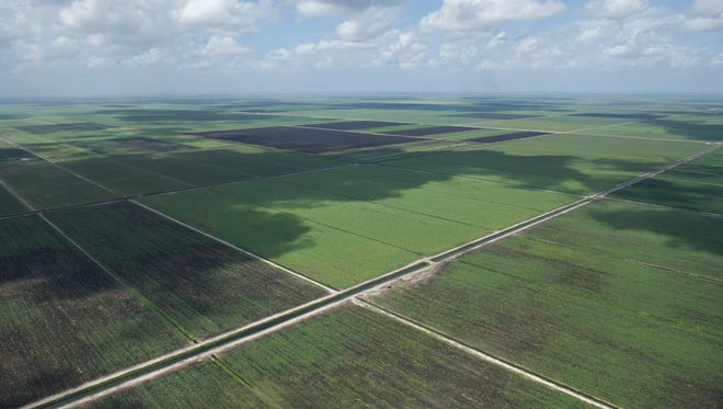 An aerial view of land proposed for a reservoir to store excess Lake Okeechobee water in the original version of Senate Bill 10 is seen March 24, 2017, on a tour with South Florida Water Management District.
