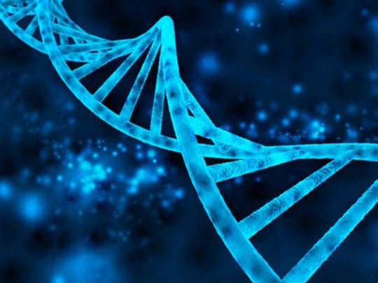 dna-double-helix_large.jpg