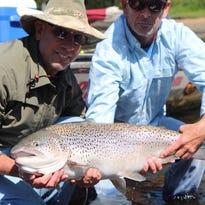 Wisconsin angler's first Taneycomo brown trout was a whopper