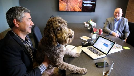 Olive, an Australian Labradoodle, sits with owner CEO Gary Chiappetta while he conducts a meeting at Kaleidoscope in Chicago on May 12, 2015.