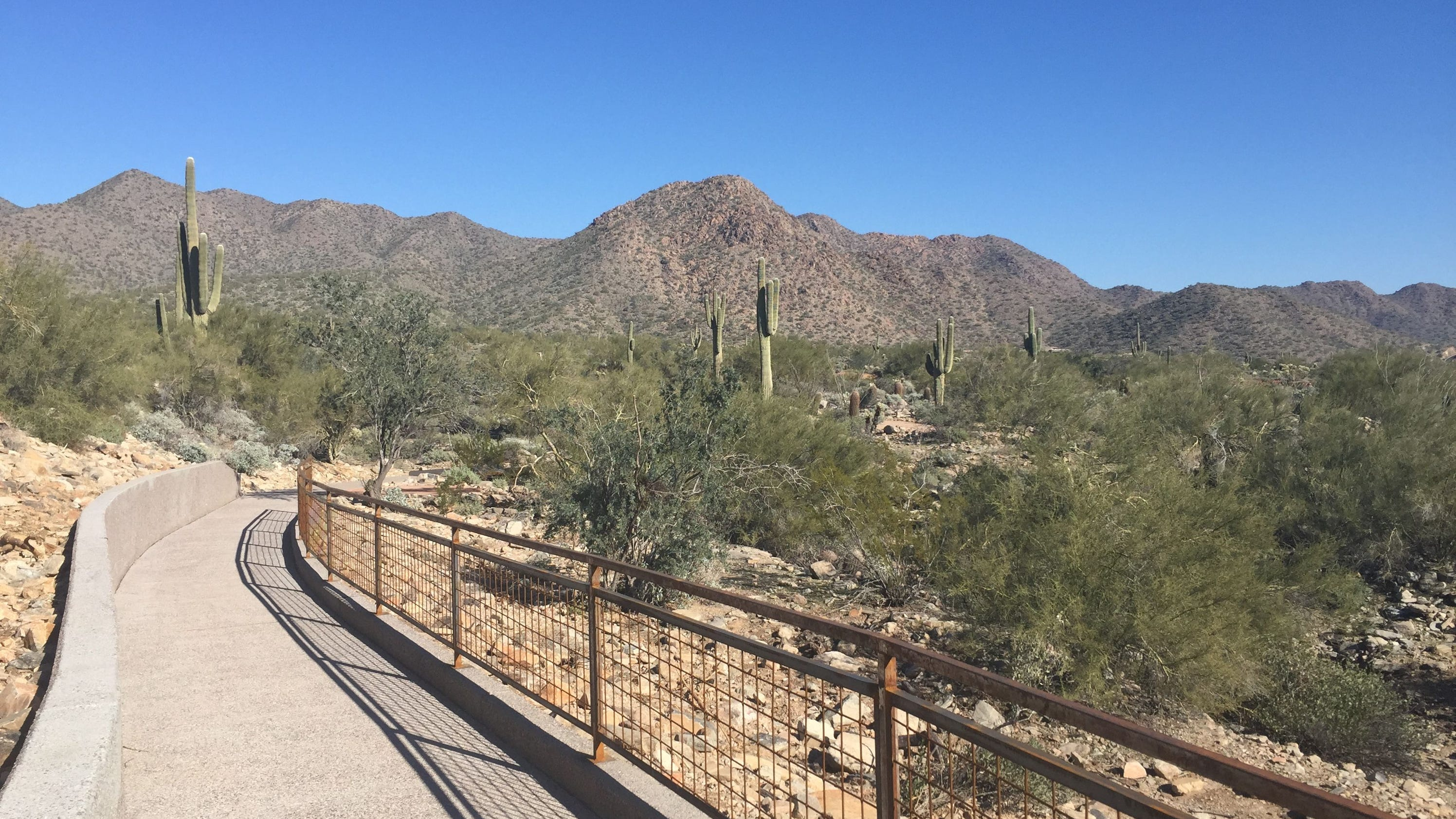 Kovach trail opens at lost dog wash trailhead in scottsdale kovach trail opens at lost dog wash trailhead in scottsdale solutioingenieria Choice Image