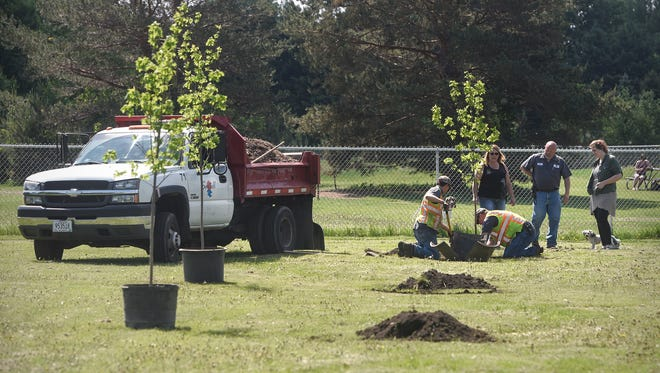 KNOTTY Paws manager Larissa Aumock and owner Kelly Thompson talk with Sartell Public Works DirectorJohn Kothenbeutel as new trees are planted Thursday, May 31, at the dog park in Sartell.