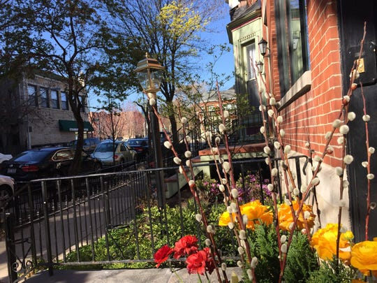 Chicago's Lincoln Park neighborhood is a tourist attraction in its own. Spring bursts forth on Deming Street.